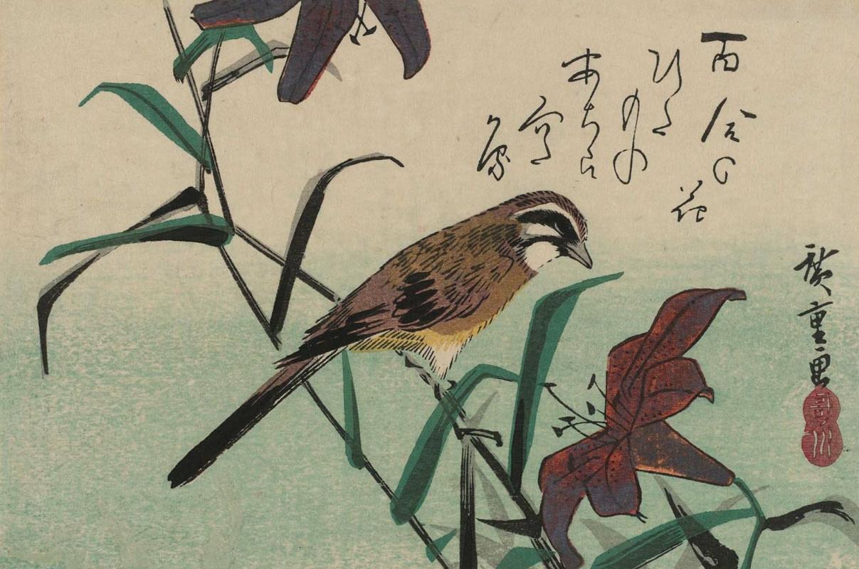 "Utagawa Hiroshige. Oatmeal and Lily. Series ""Birds and flowers"""