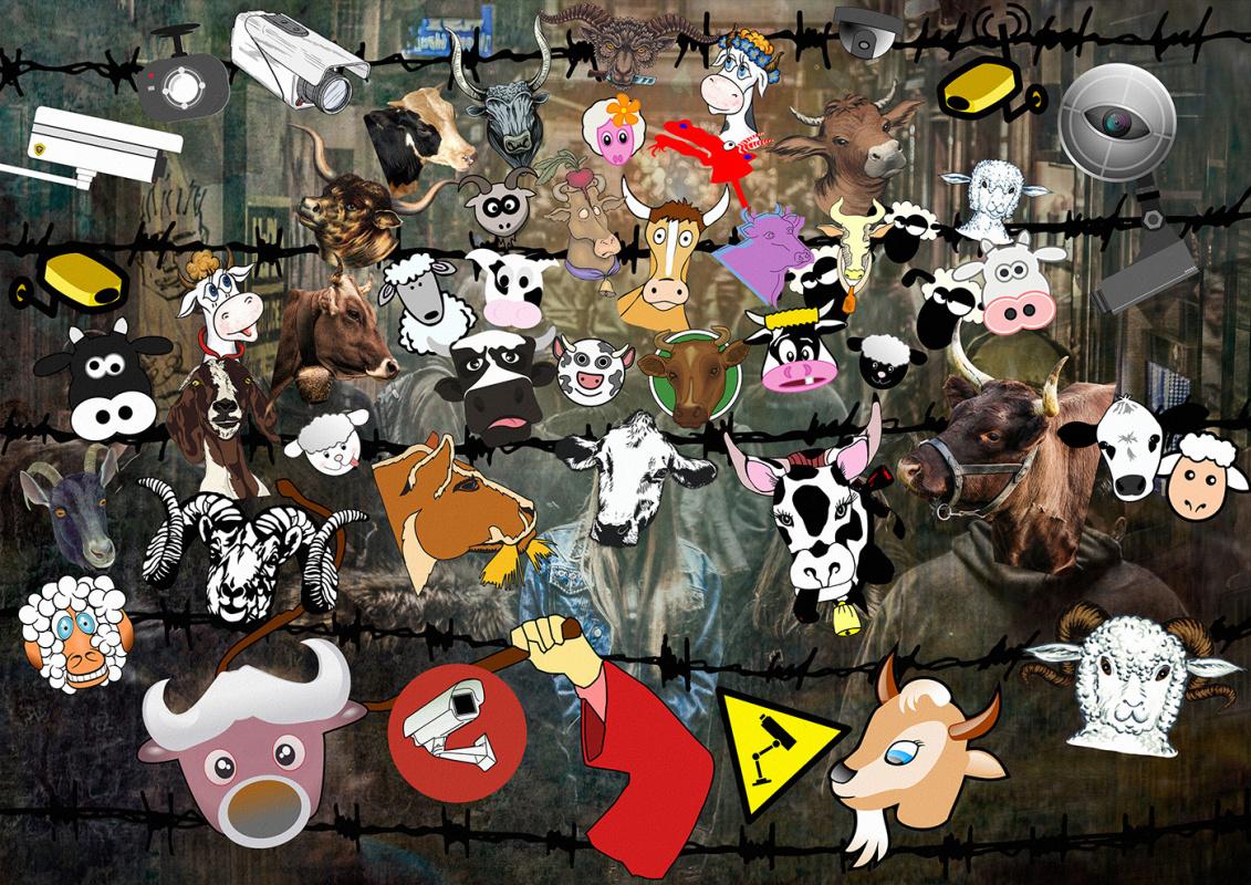 Random Human. Herd