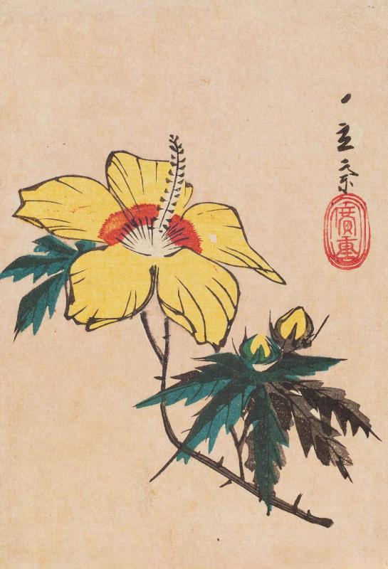 Utagawa Hiroshige. Yellow hibiscus
