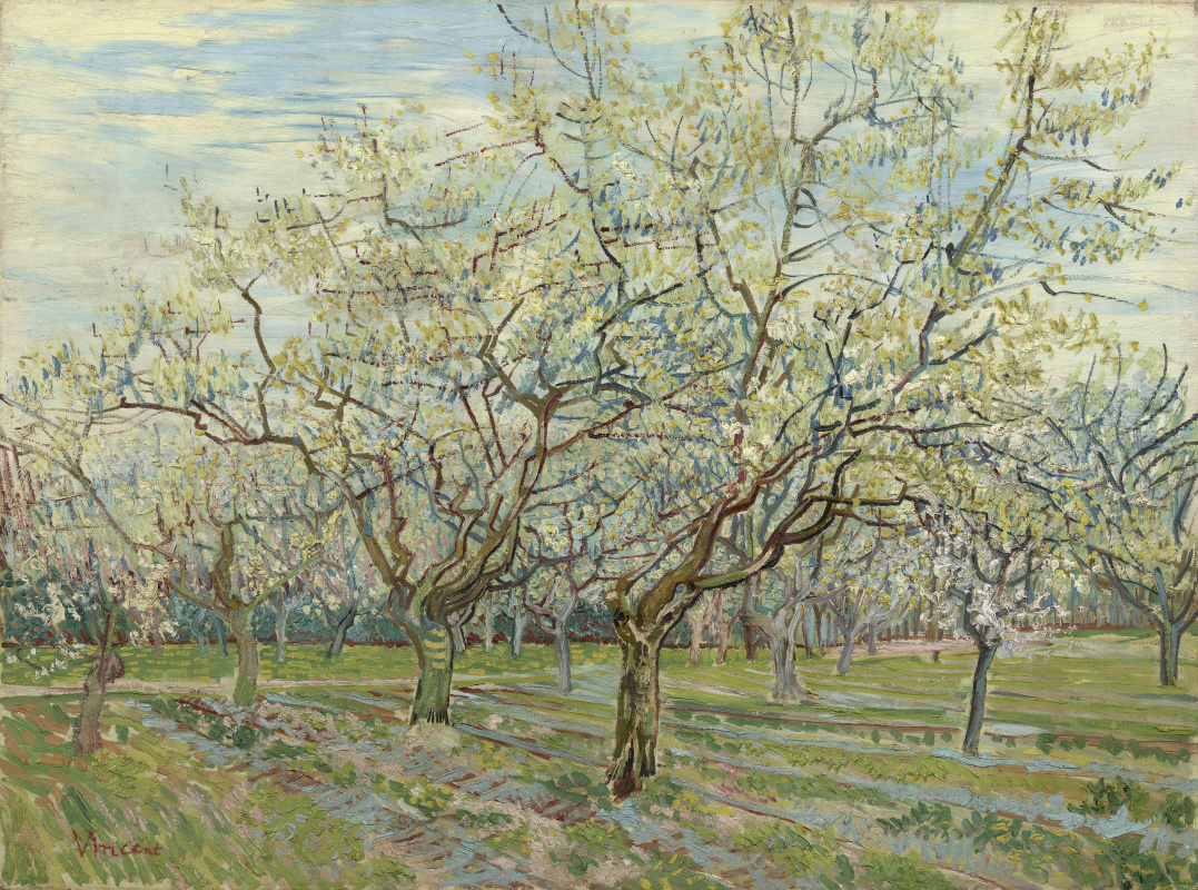 Винсент Ван Гог. Белый сад