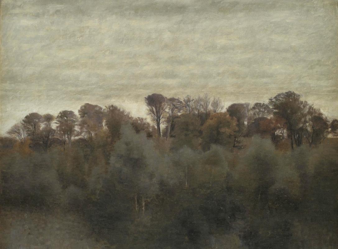 Вильгельм Хаммерсхёй. Летний пейзаж вблизи озера Фарум