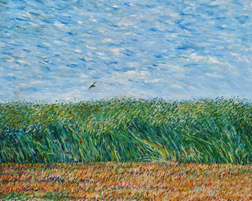 Александр Владимирович Казанцев. Wheat field