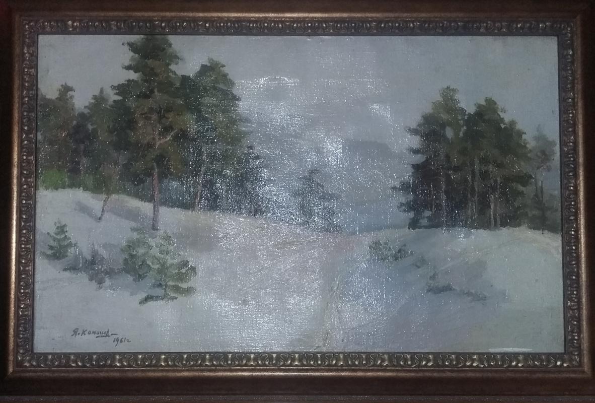 Konyshev I.. Snow slope.