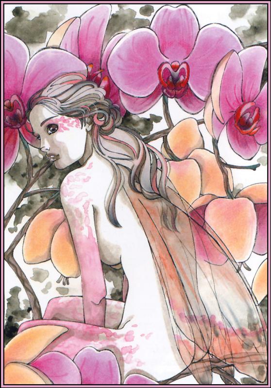 Наталья Пьерандрей. Орхидея