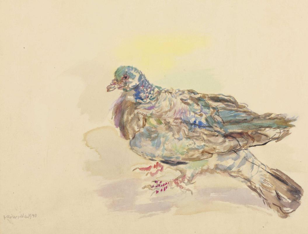 Оскар Кокошка. Голубь