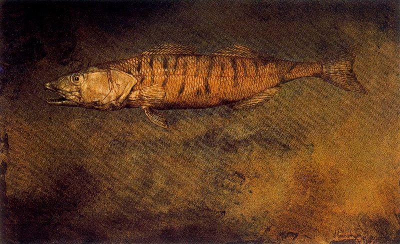 Jose Hernandez. Fish