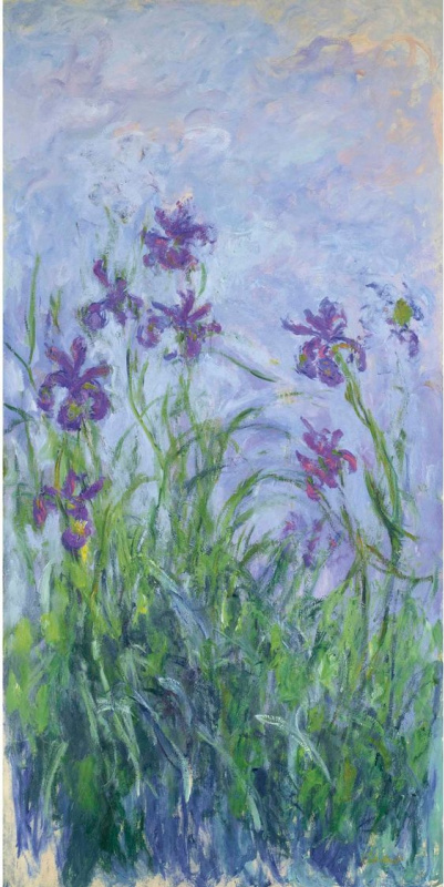 Claude Monet. Pink-purple irises