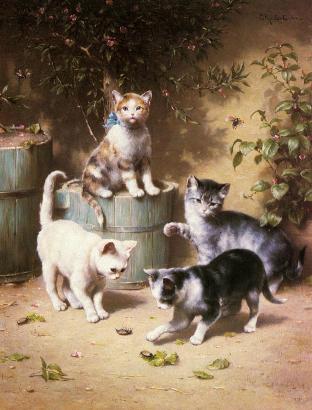 Котята играют с жуками