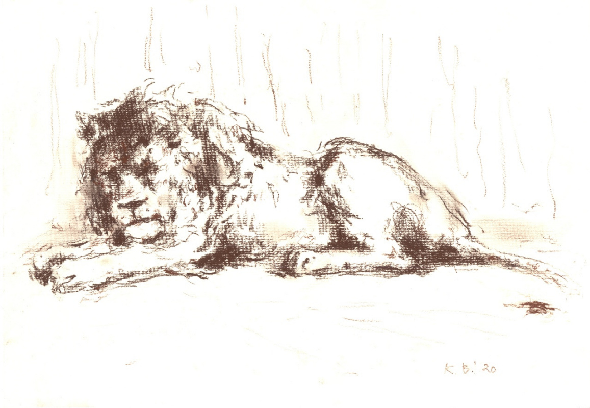 Виктор Каплун. Набросок льва