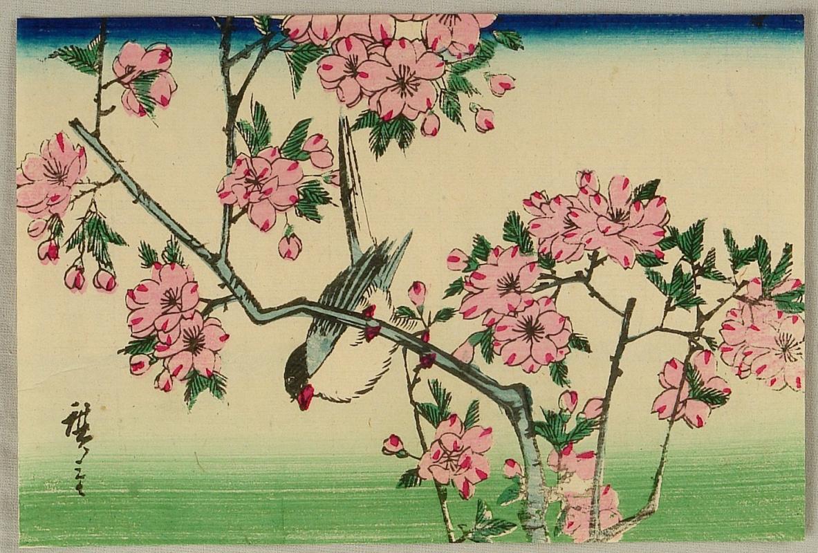 Утагава Хиросигэ. Птица и вишни