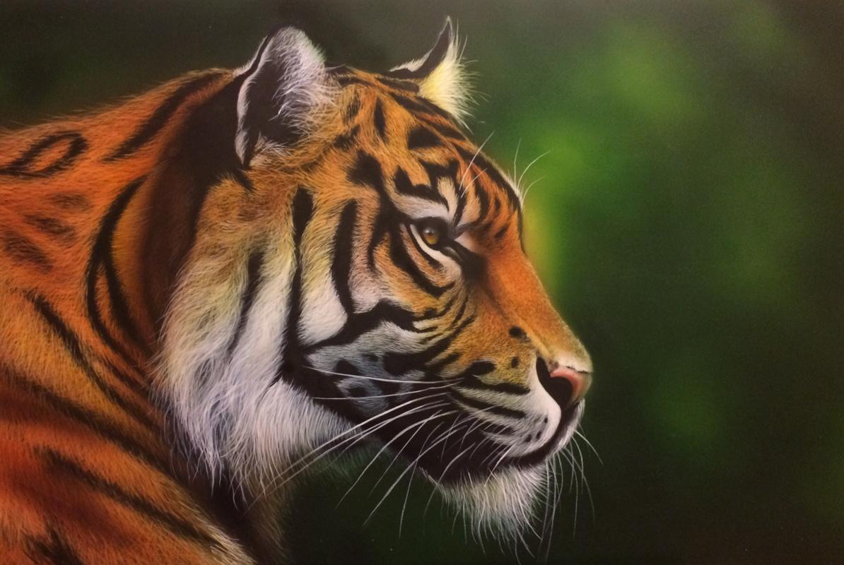 """Khristina Igorevna Belousova. Airbrushing """"Tiger"""""""