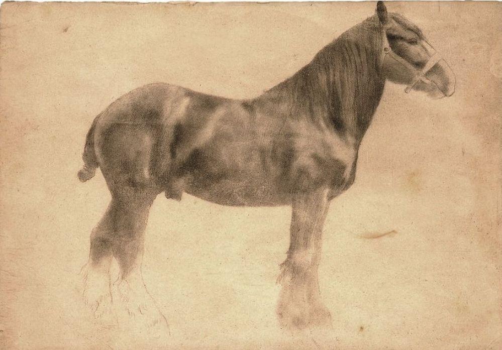 Эдгар Дега. Рабочий конь