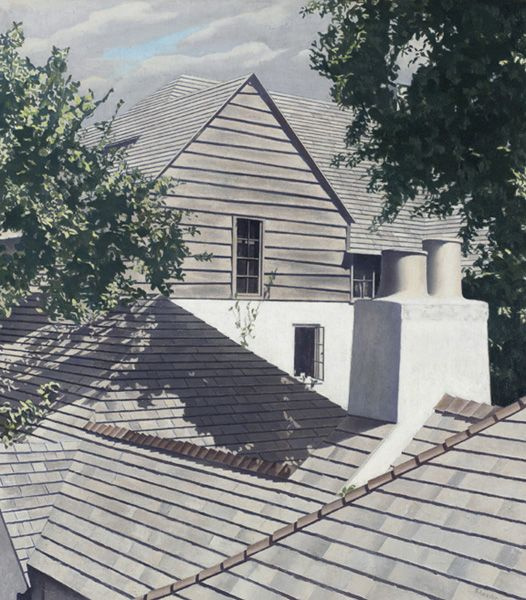 Charles Schiller. Крыши. Вагонка