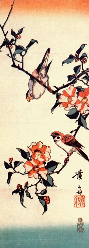 Kaisay Aisen. Camellia and sparrows
