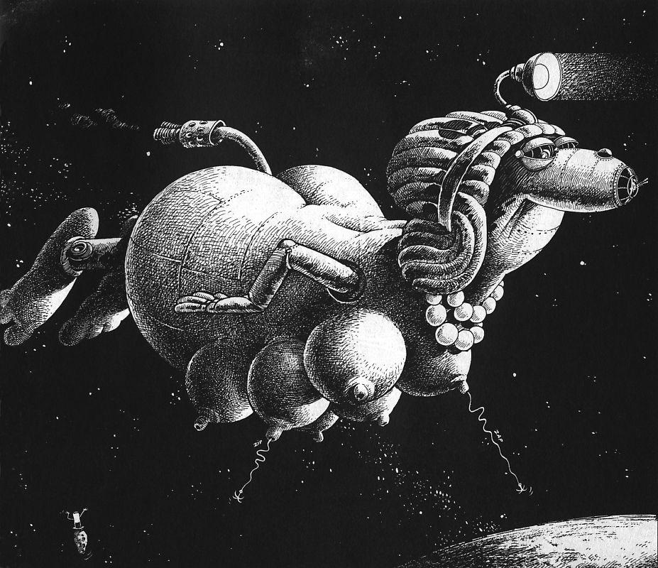 Жан-Жак Лу. Космический полет