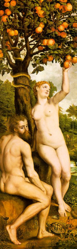 Mihil van Coxie. Adam and eve