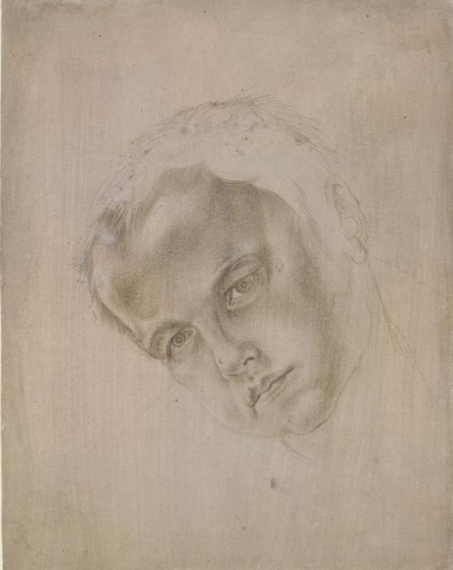 Альбрехт Дюрер. Голова мальчика, склонённая влево