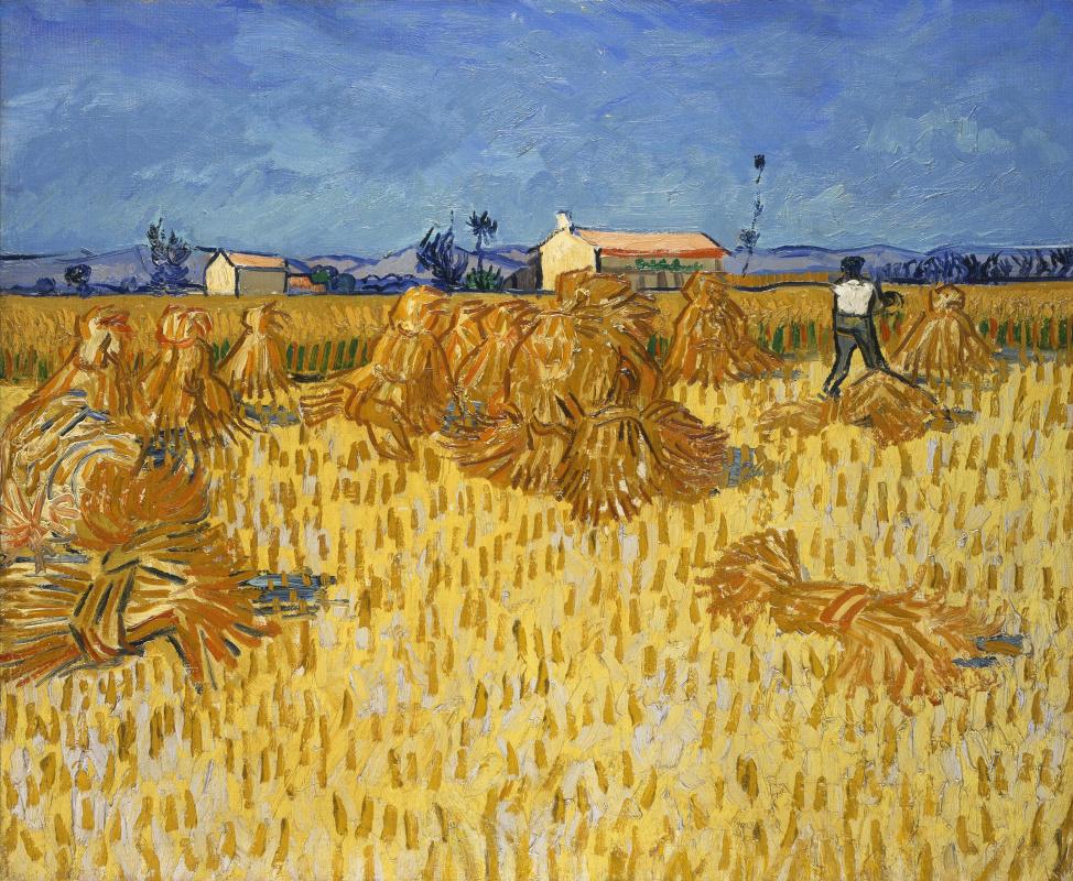 Vincent van Gogh. Harvest in Provence