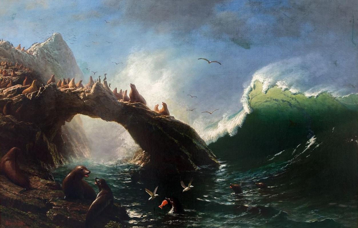 Альберт Бирштадт. Тюлени на скалах, Фараллоновы острова