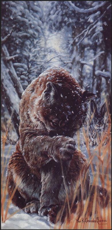 Виви Крандалл. Снежная завеса