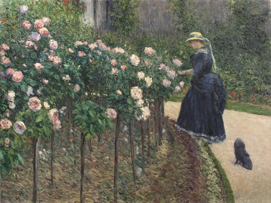 Гюстав Кайботт. Розы в саду в Пти-Женвилье