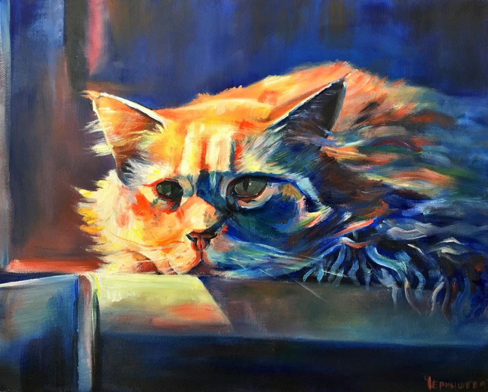 Elizabeth Evgenievna Chernysheva. Бездомный кот