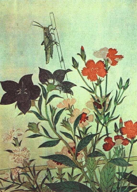 Китагава Утамаро. Рисовая саранча-красная стрекоза-гвоздики-китайские колокольчики