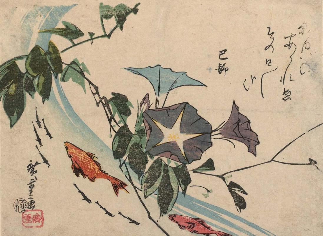 Utagawa Hiroshige. Goldfish, carp and morning glory