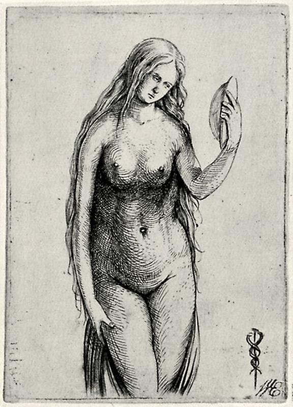Jacopo de Barbary. Venus