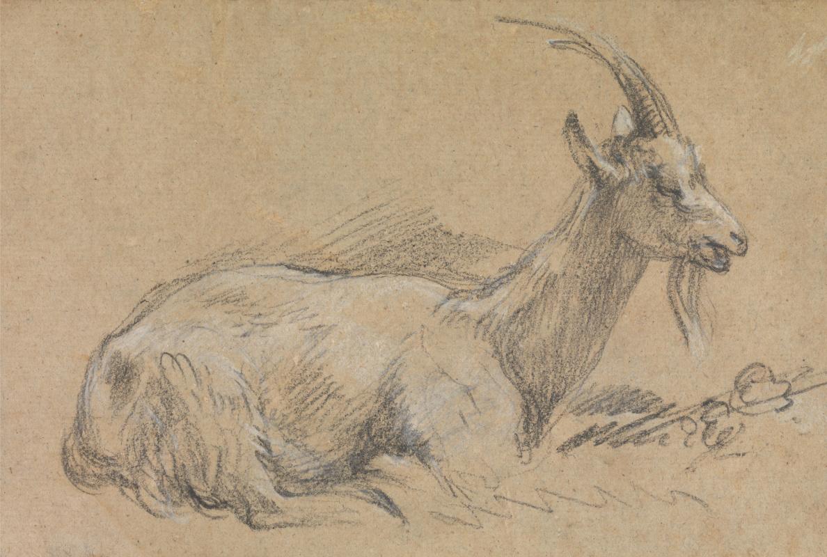 Thomas Gainsborough. Lying goat. Sketch