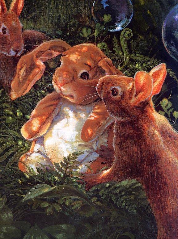 Донна Грин. Кролики