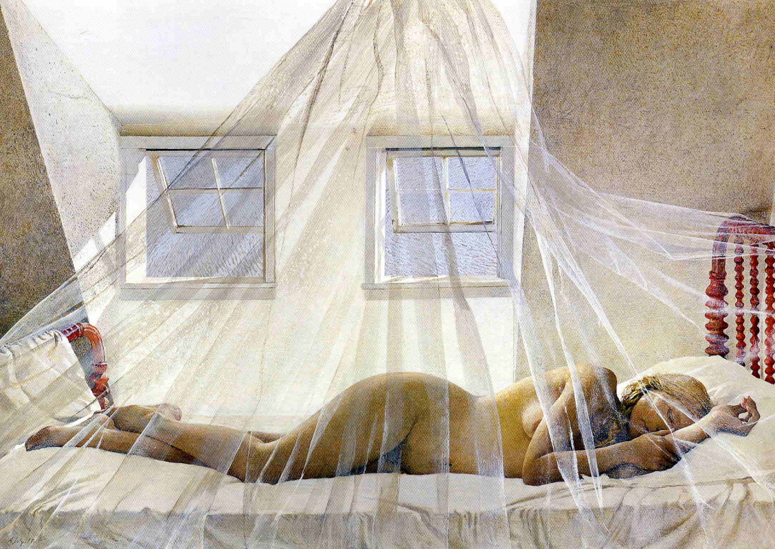 """Andrew Wyeth. Daydreams (from the series """"Helga"""")"""