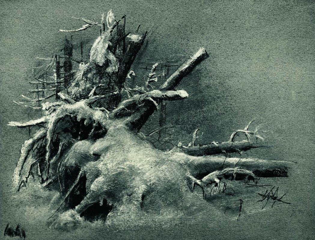 Иван Иванович Шишкин. Выкорчеванные пни под снегом