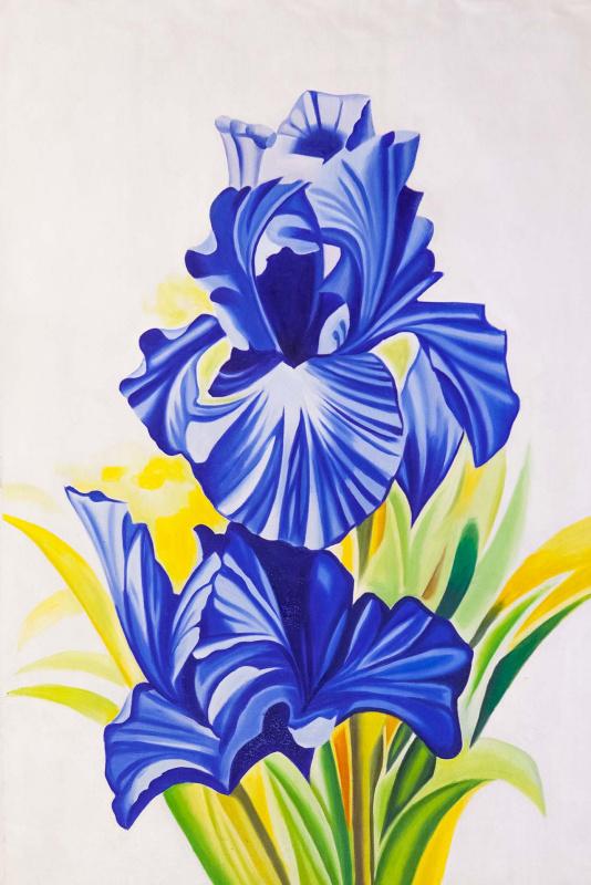 (no name). Lovely Iris