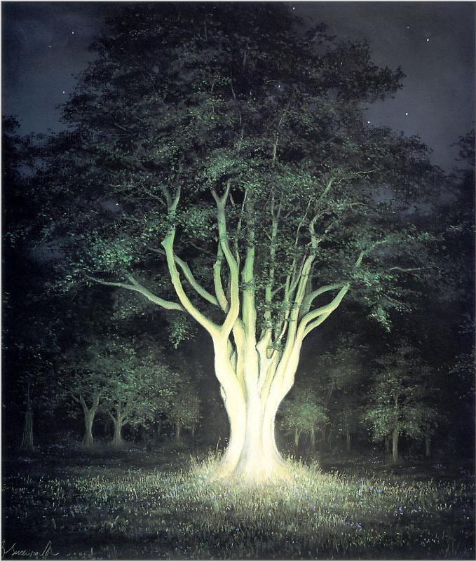 Анна Садворс. Старое дерево