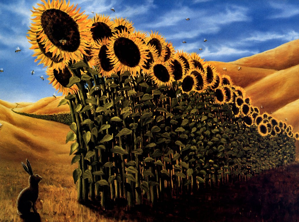 Robert Bissel. Sunflowers
