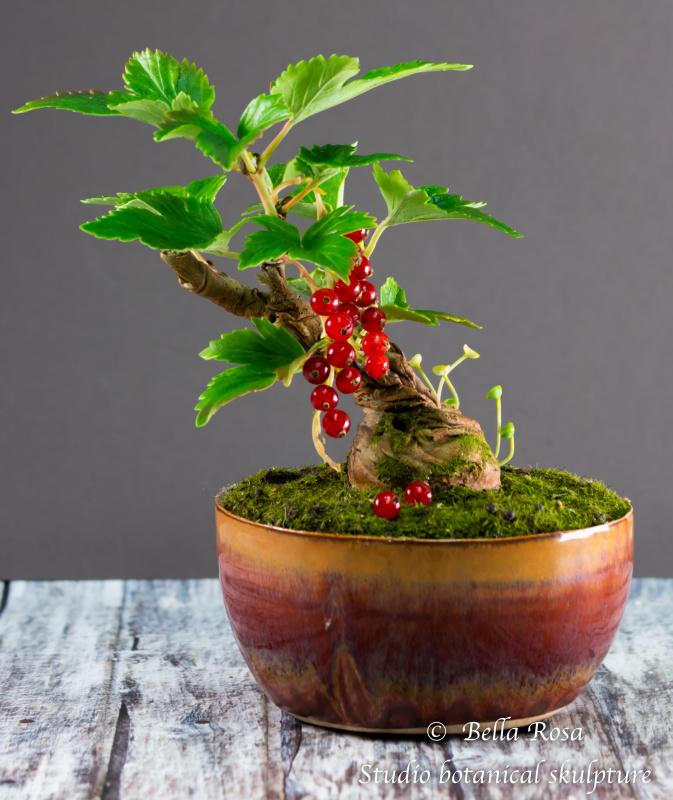 Valery Drey. Currant bonsai. Mini.