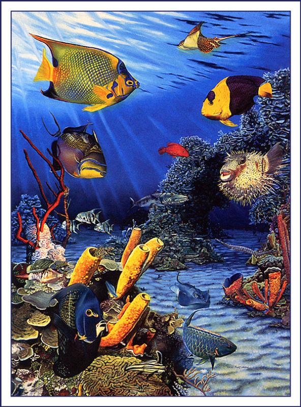 Бен Сатурен. Карибские рифовые рыбы