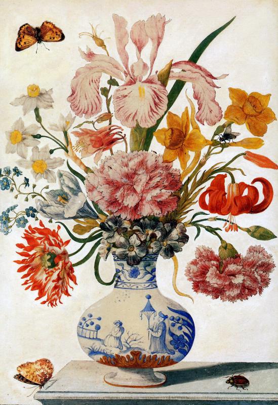 Maria Sibylla Merian. Floral still life in Chinese vase