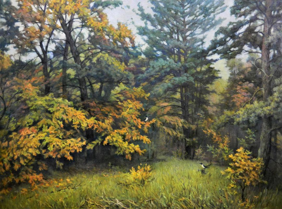 Александр Владимирович Кусенко. Mixed forest