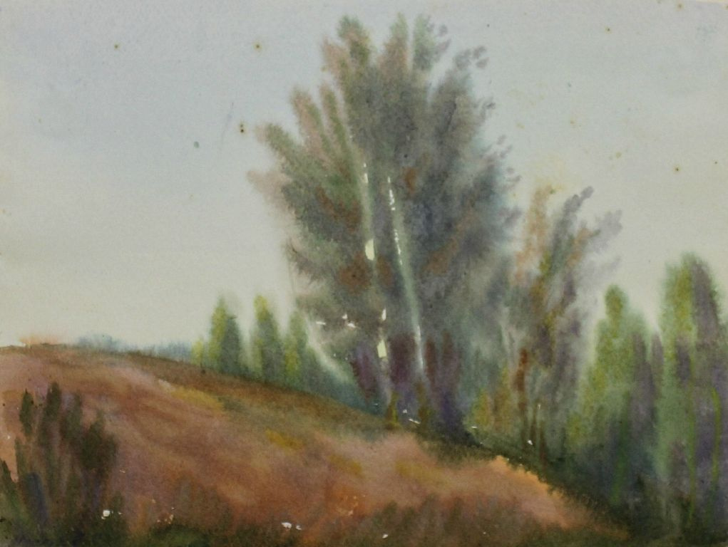 Anatoly Sergeevich Melkov. Karelian landscape