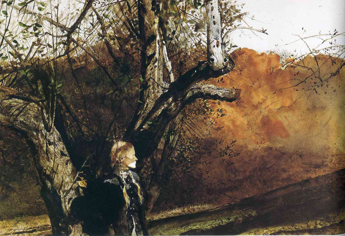 Andrew Wyeth. Asylum