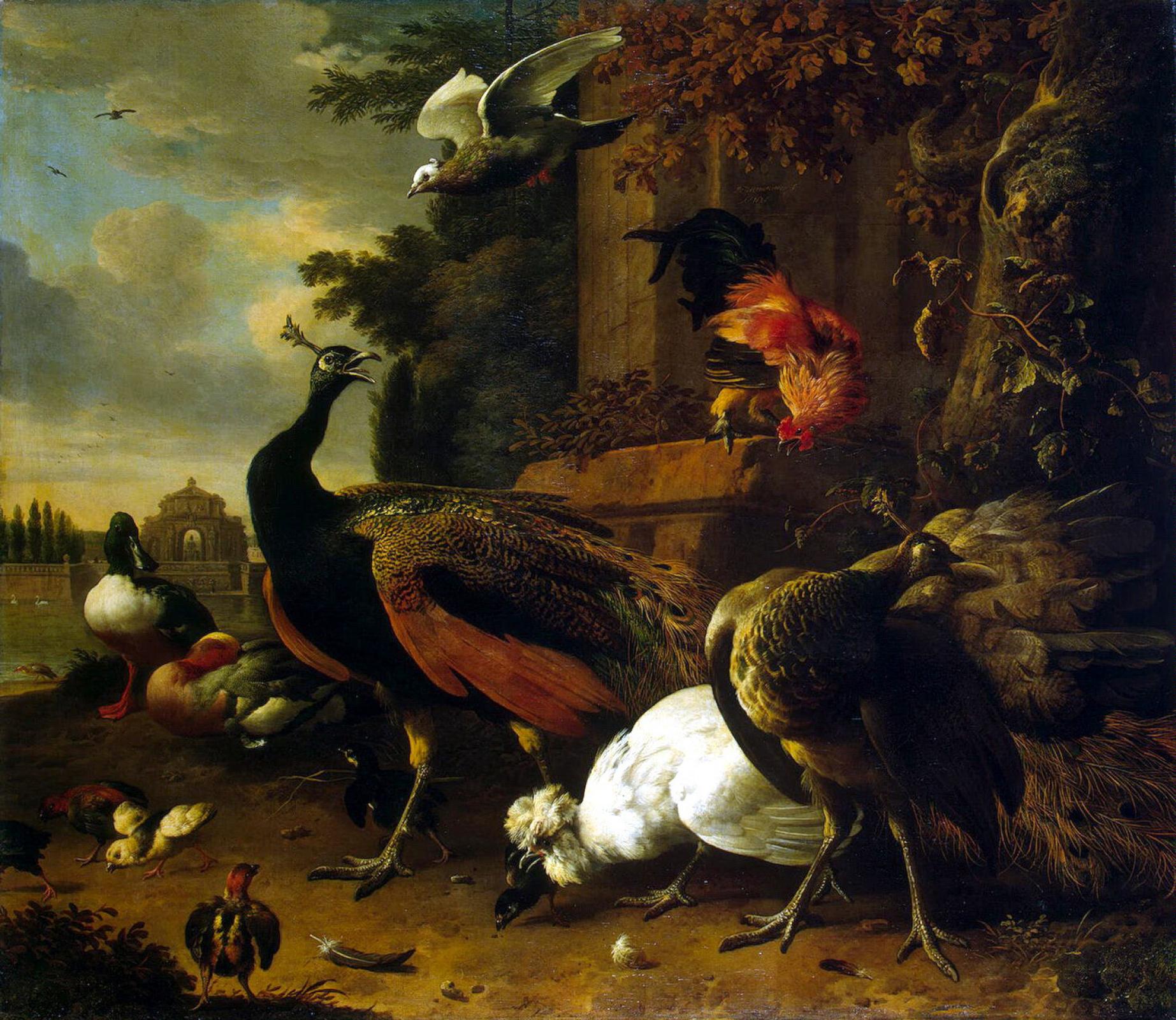 Мельхиор де Хондекутер. Птицы в парке