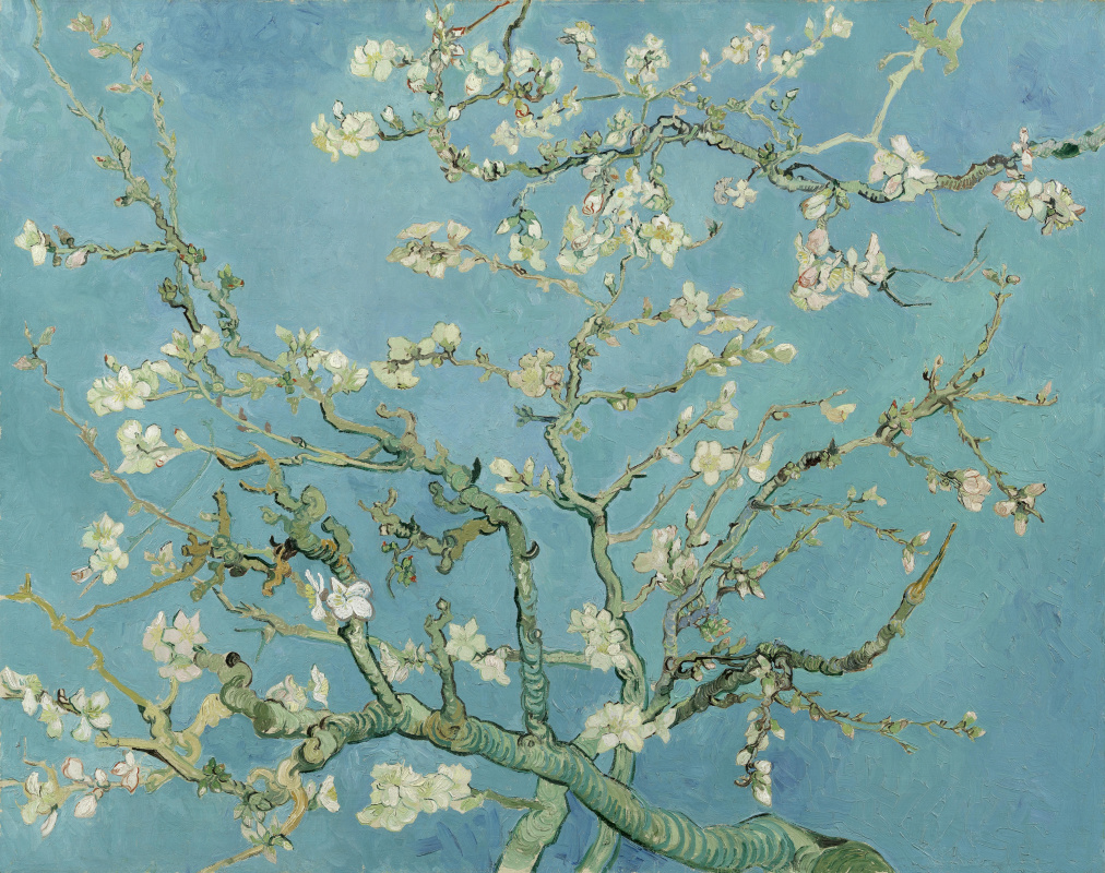 Vincent van Gogh. Flowering almond