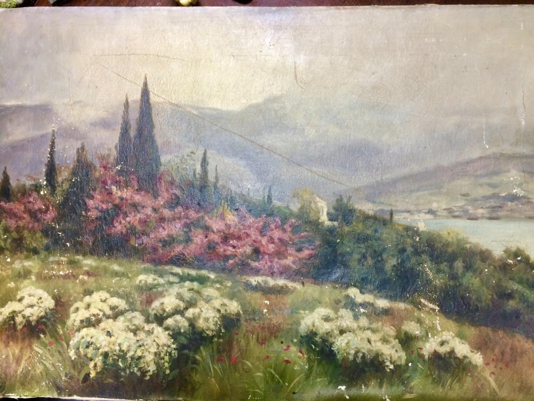 Petrova A.R.. Spring in Crimea