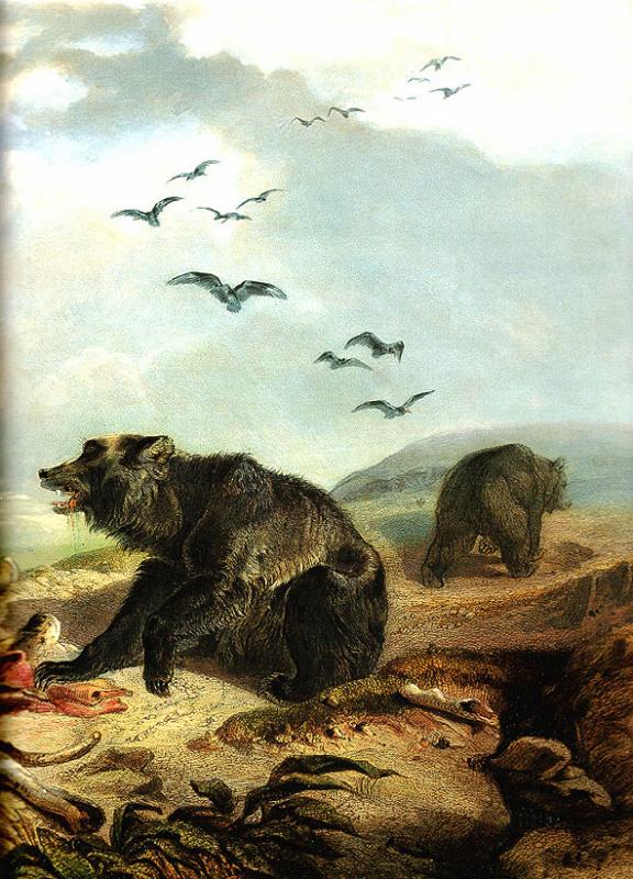 Карл Бодмер. Охота на гризли