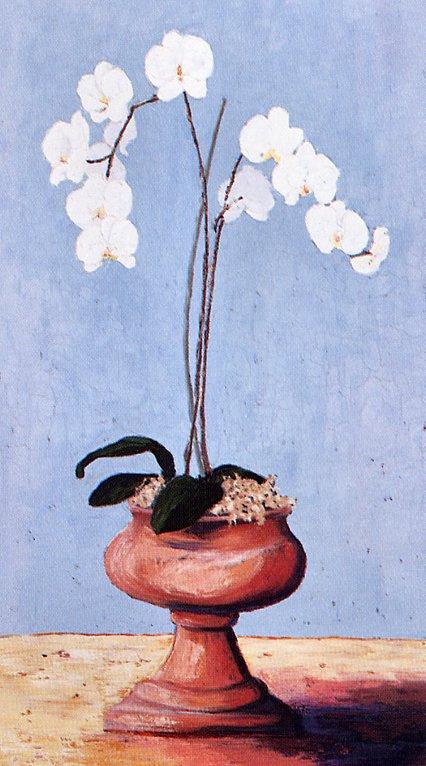 Джули Хинтон. Орхидеи