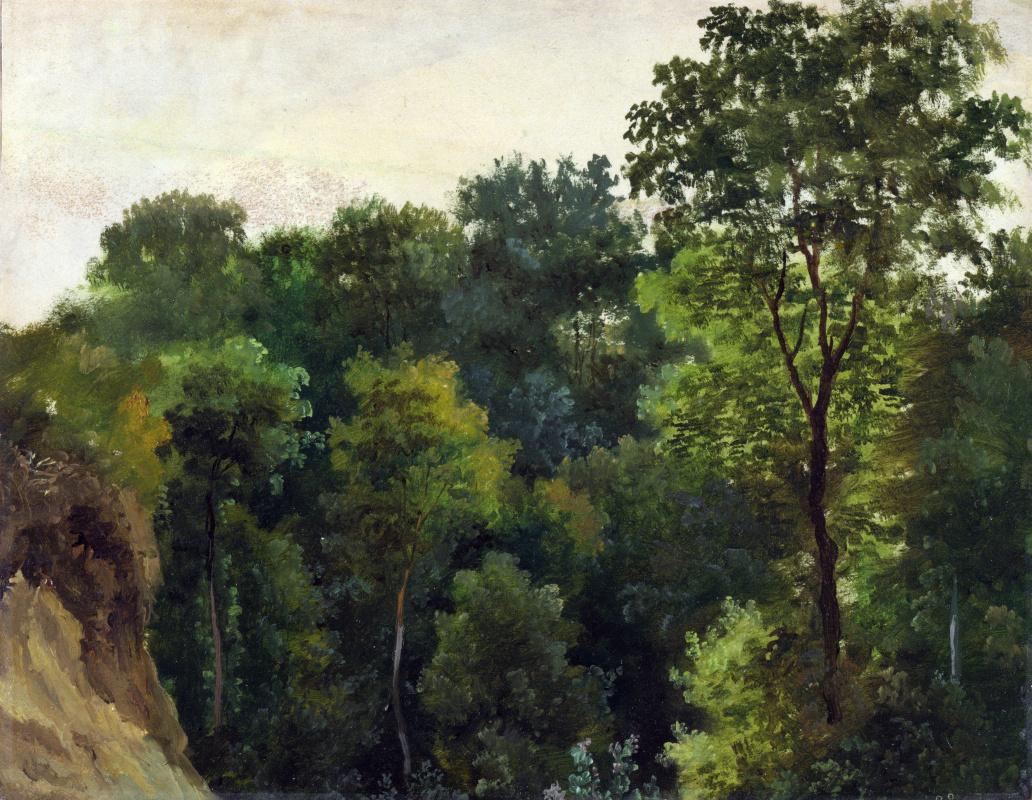 Жан-Мишель Келс. Деревья