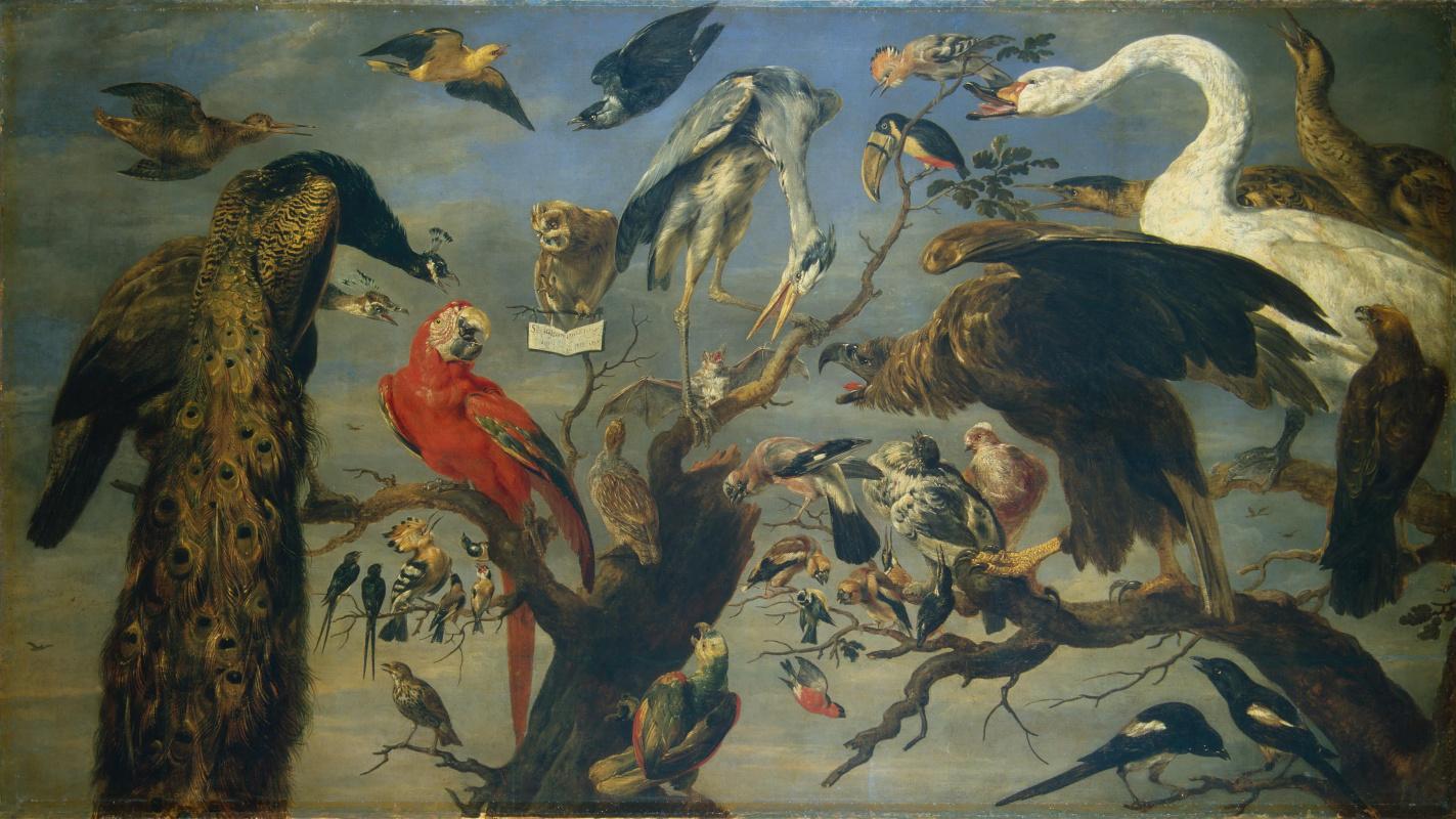 France Snyders. Bird concert
