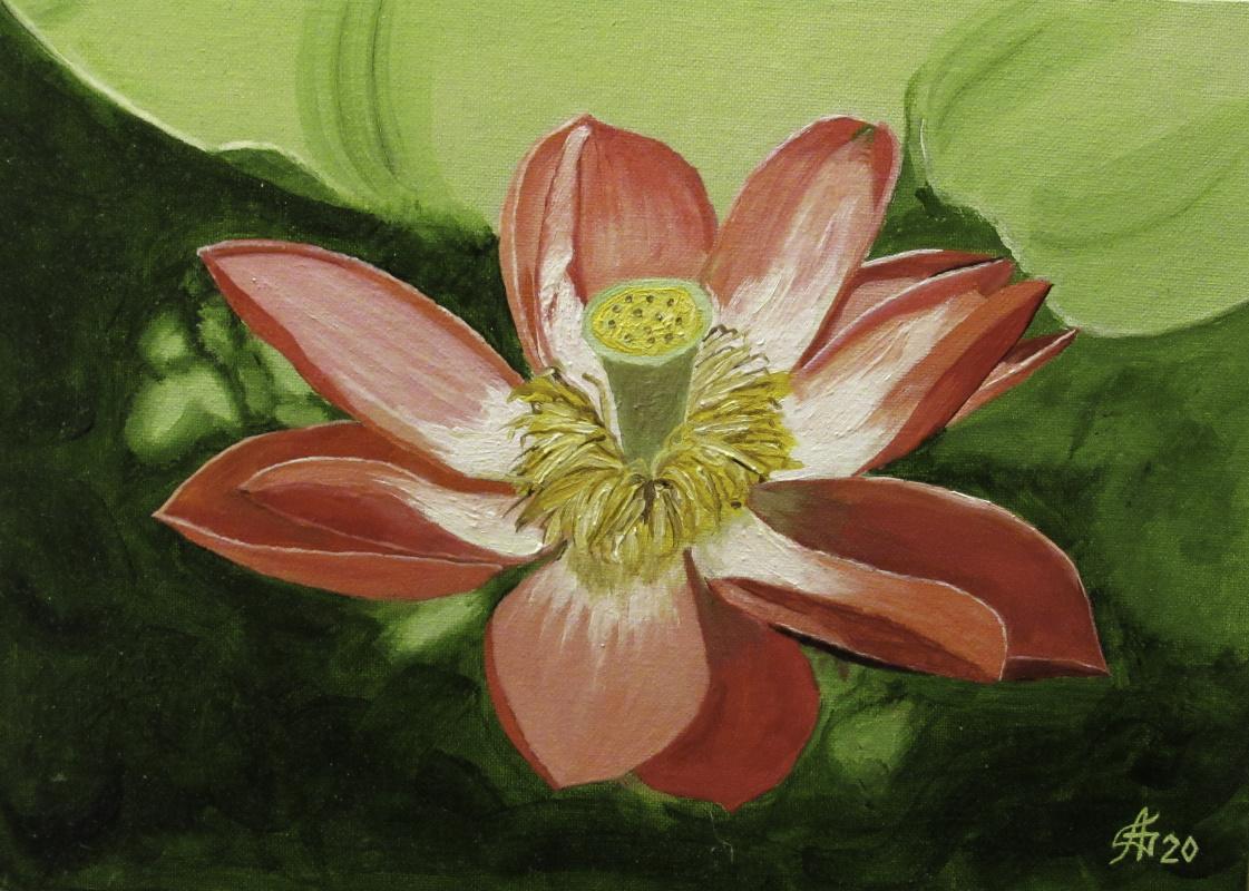 Artashes Badalyan. The Sacred Lotus - x-hardboard-m - 25x35